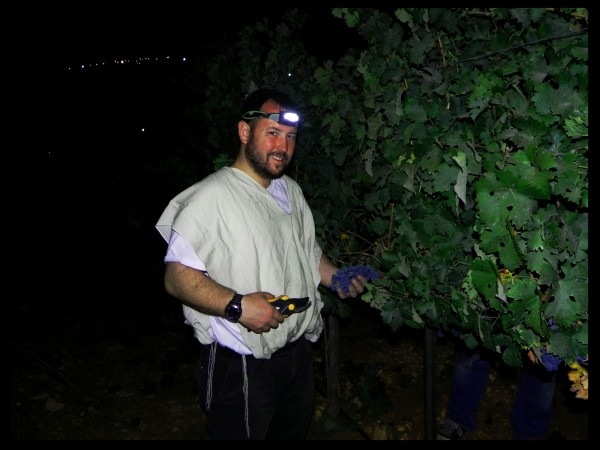 Rabbi Ben Packer Director of Jerusalem Heritage House, Cuts grapes the night after Yom Kipur, in aish kodesh. Rabbi Packer provides students with a free place to stay in Jerusalem.