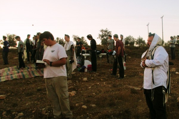 Guests of the Jerusalem Heritage House Join an early Minyan before the Grape Harvest in Shomrom, Israel