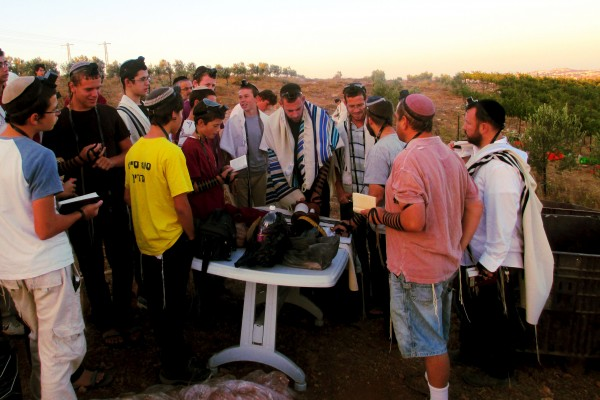 Guests of the Jerusalem Heritage House and Rabbi Ben Packer Hear the Torah Reading before the Grape Harvest in Shomrom, Israel. Guests Receive an aliyah (honor) before doing this great mitzvah of harvesting the land of Israel.