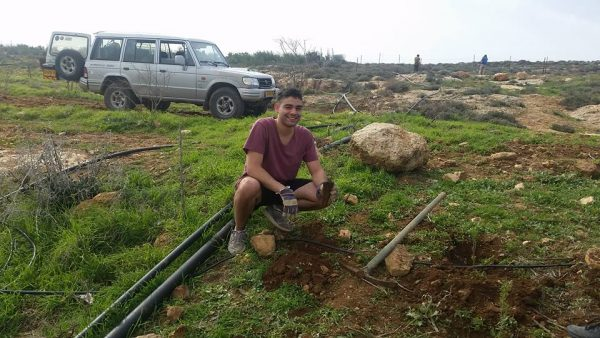 planted trees on the hills of Itamar
