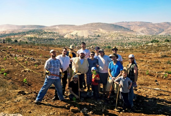 Planting a Vinyard in Kefar Tapuach
